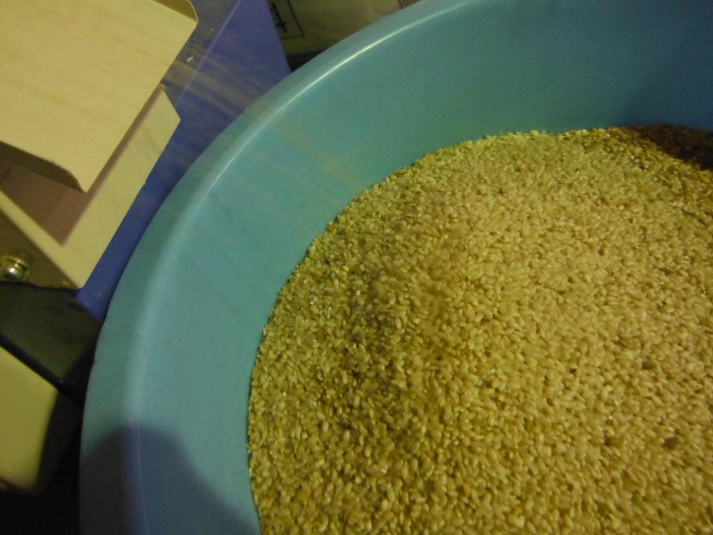 ミニダップに籾を通し、玄米になる。