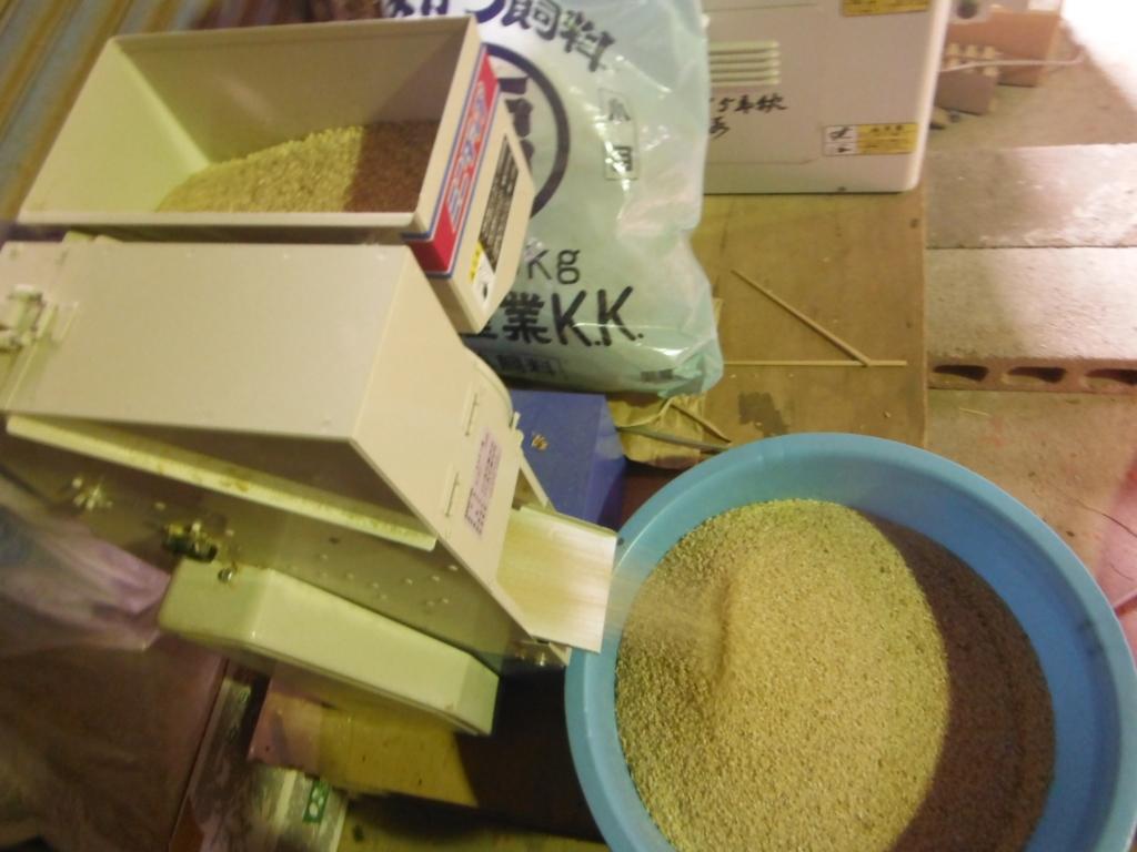 2回目のミニダップを通して籾摺り。