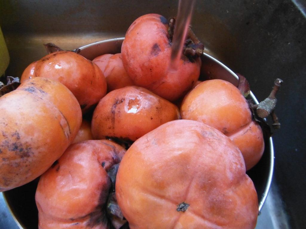 熟した甘柿を水で洗う。