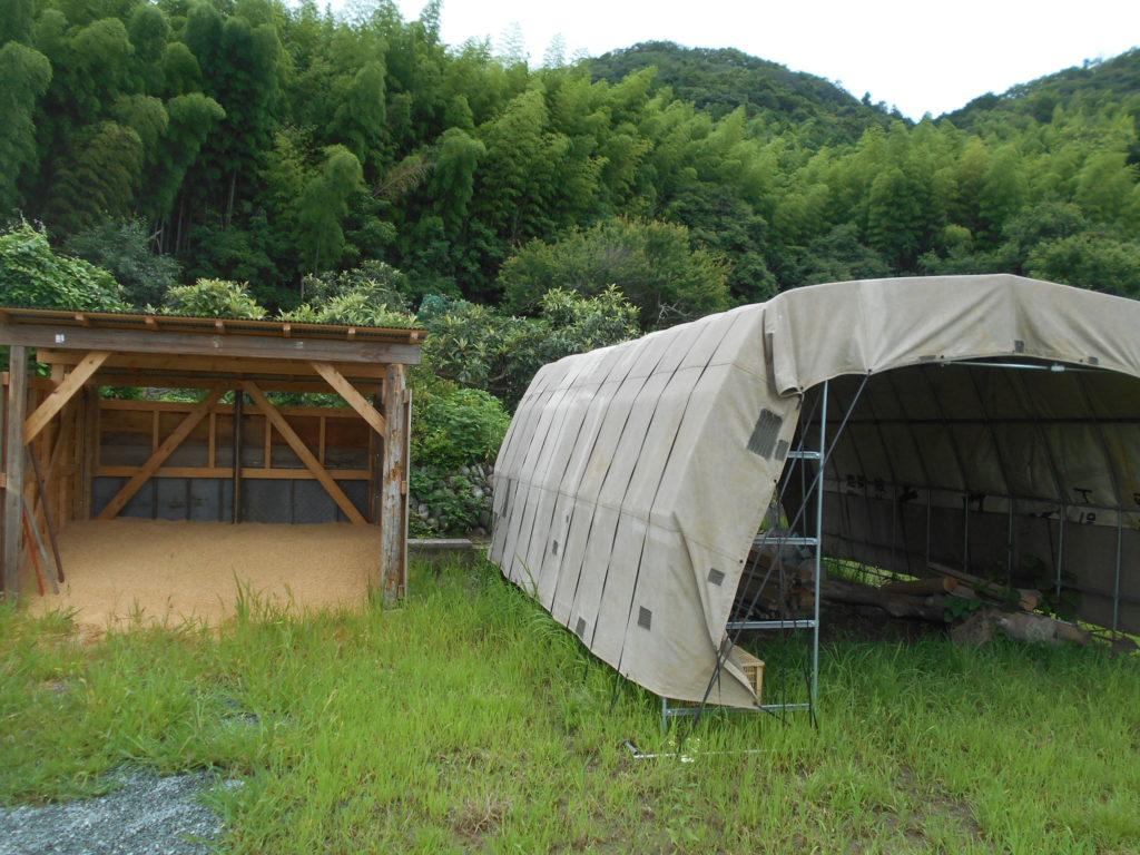 山をバックに完成した廃シートを利用したパイプハウス。