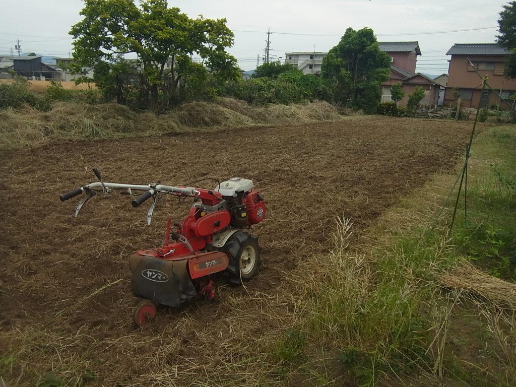 管理機で、耕された畑。