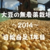 大豆の無農薬栽培2014