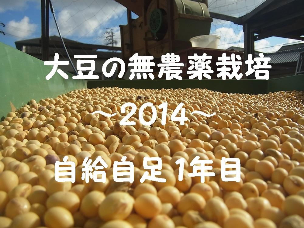 大豆の無農薬栽培2014.