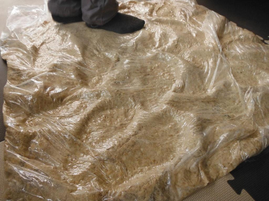 味噌のための大豆をビニール袋に入れて潰す。