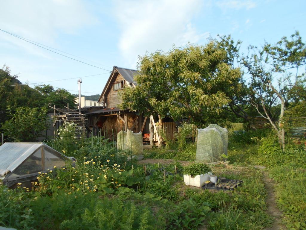 小さな菜園と小さな家。