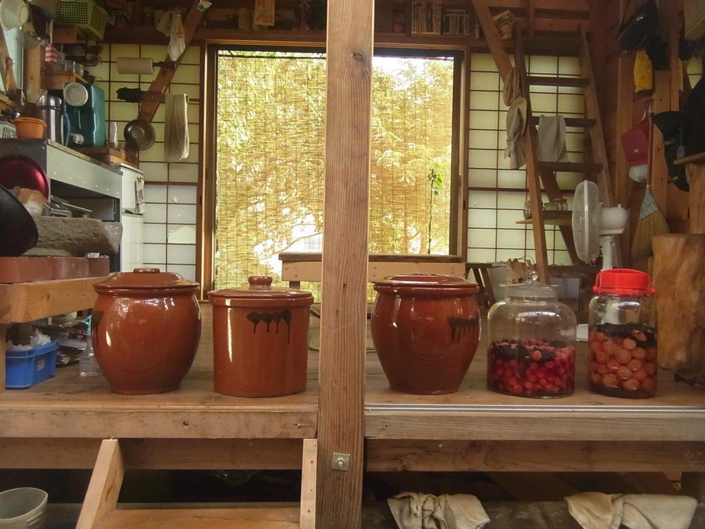 出来上がった白梅干しの壺たち。
