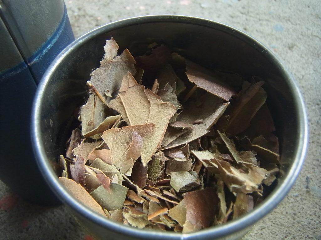 荒いびわの葉茶を缶に入れる。