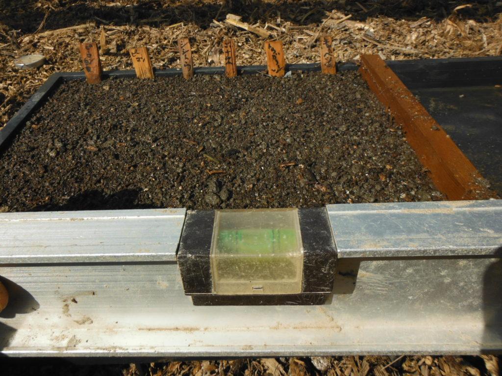 水平になるように育苗箱をセット。