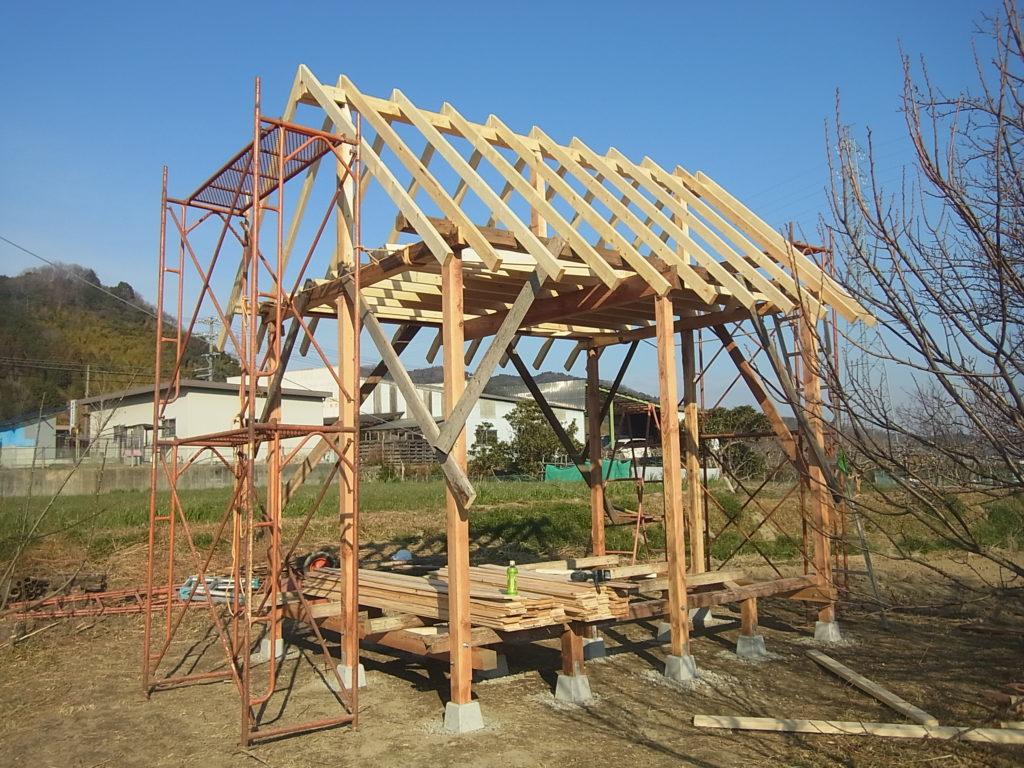 屋根垂木を張り終える。