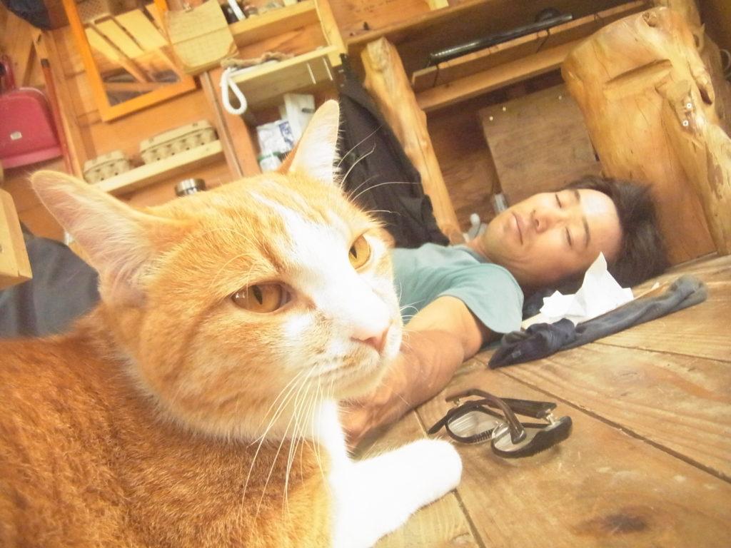 農園の主と休む猫。