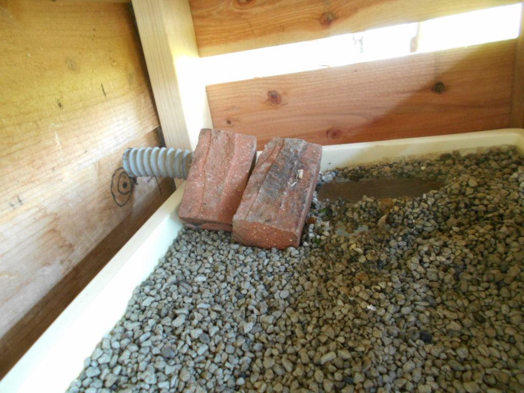 排水ホースを浄化装置にセット。