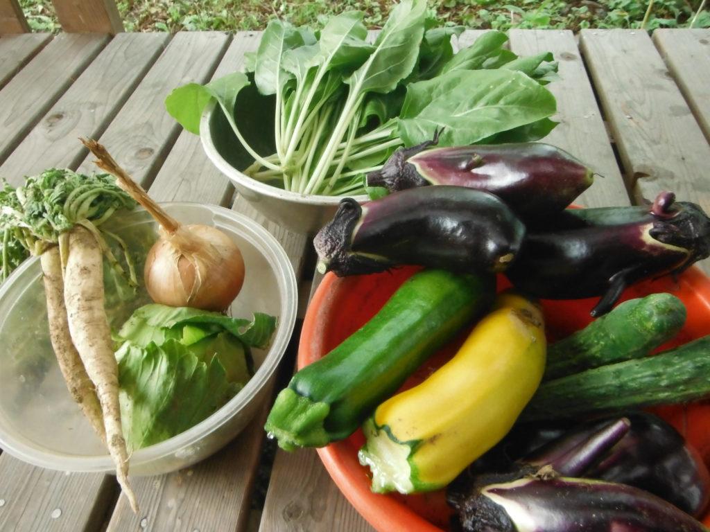 様々な野菜を自給自足。
