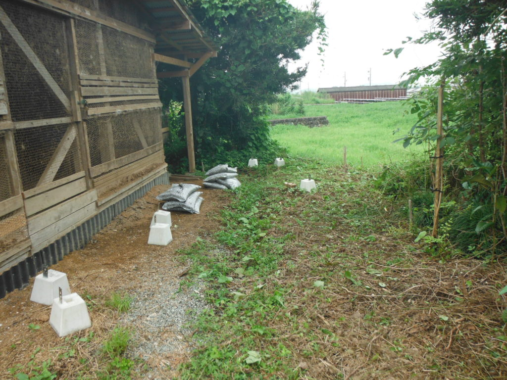 ここに鶏小屋を増設予定。