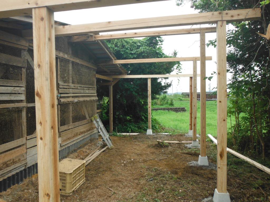 鶏小屋の柱と桁が立つ。