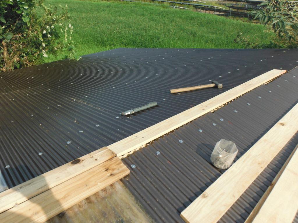 屋根に波板を張っていく。