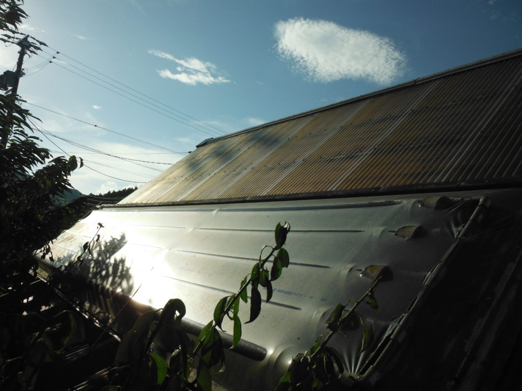 8月の塩ビ管太陽熱温水器。