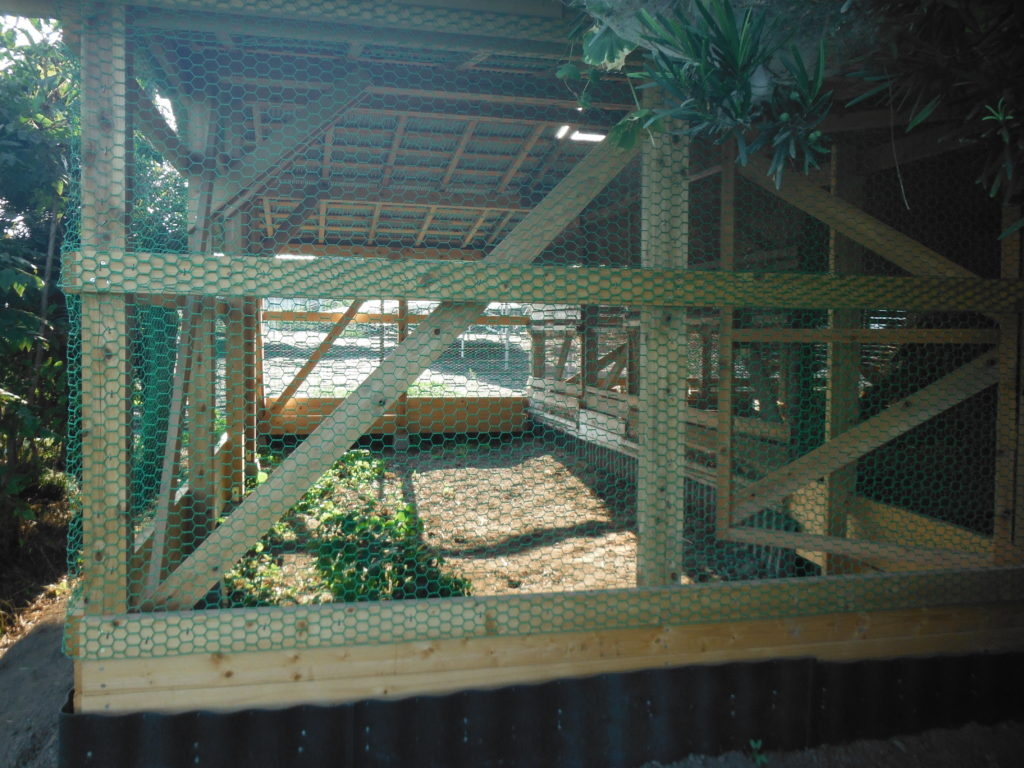 鶏小屋に金網を張る。