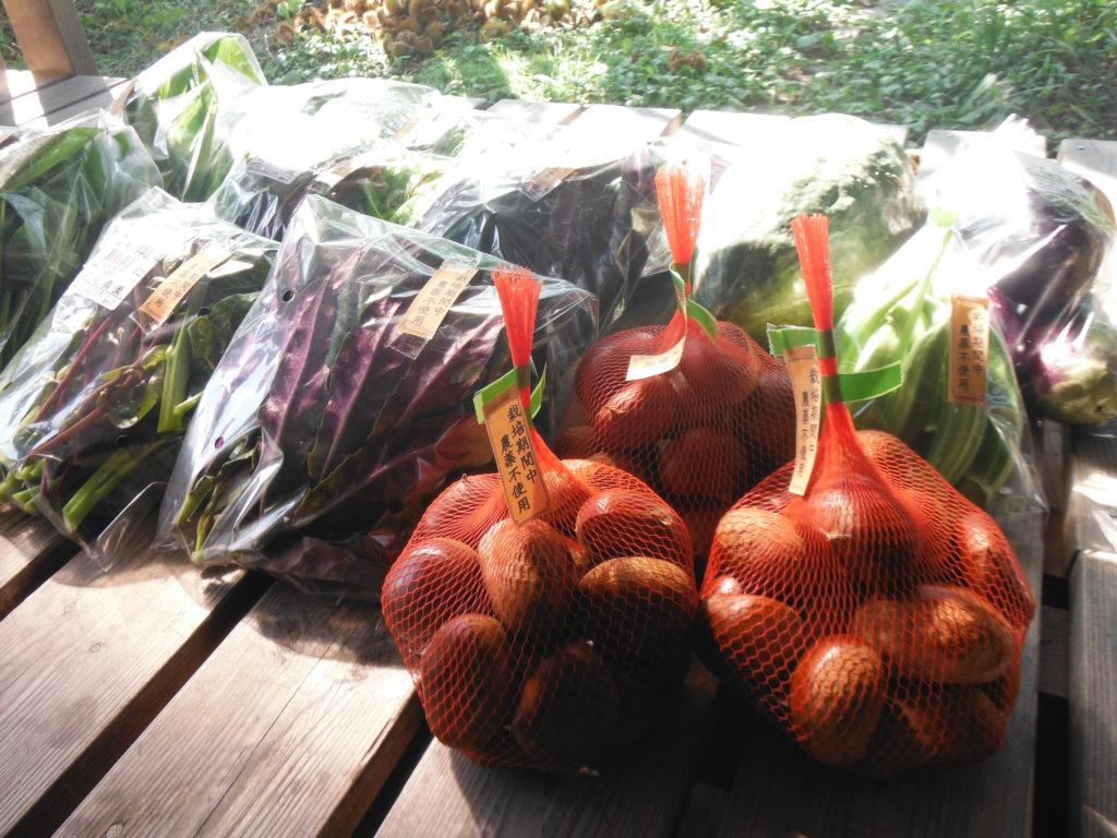 10月の野菜の収穫。