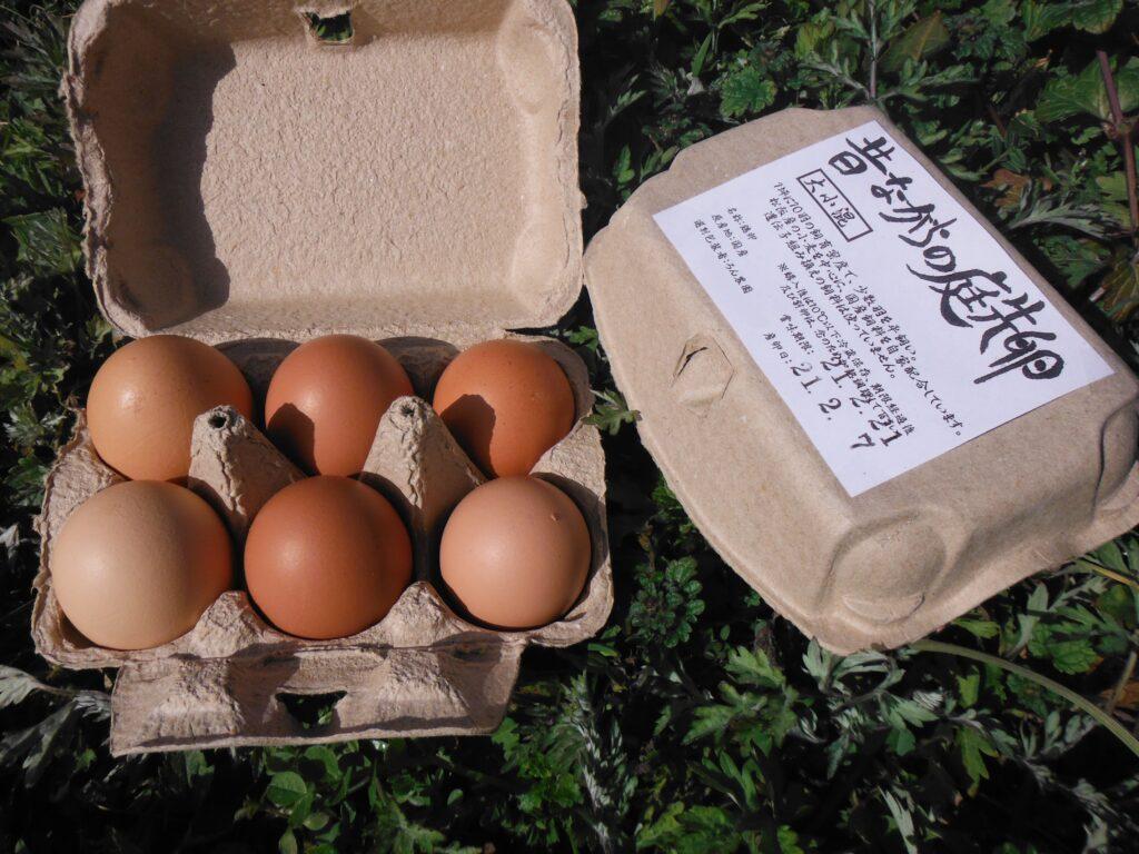 ろん農園の卵。