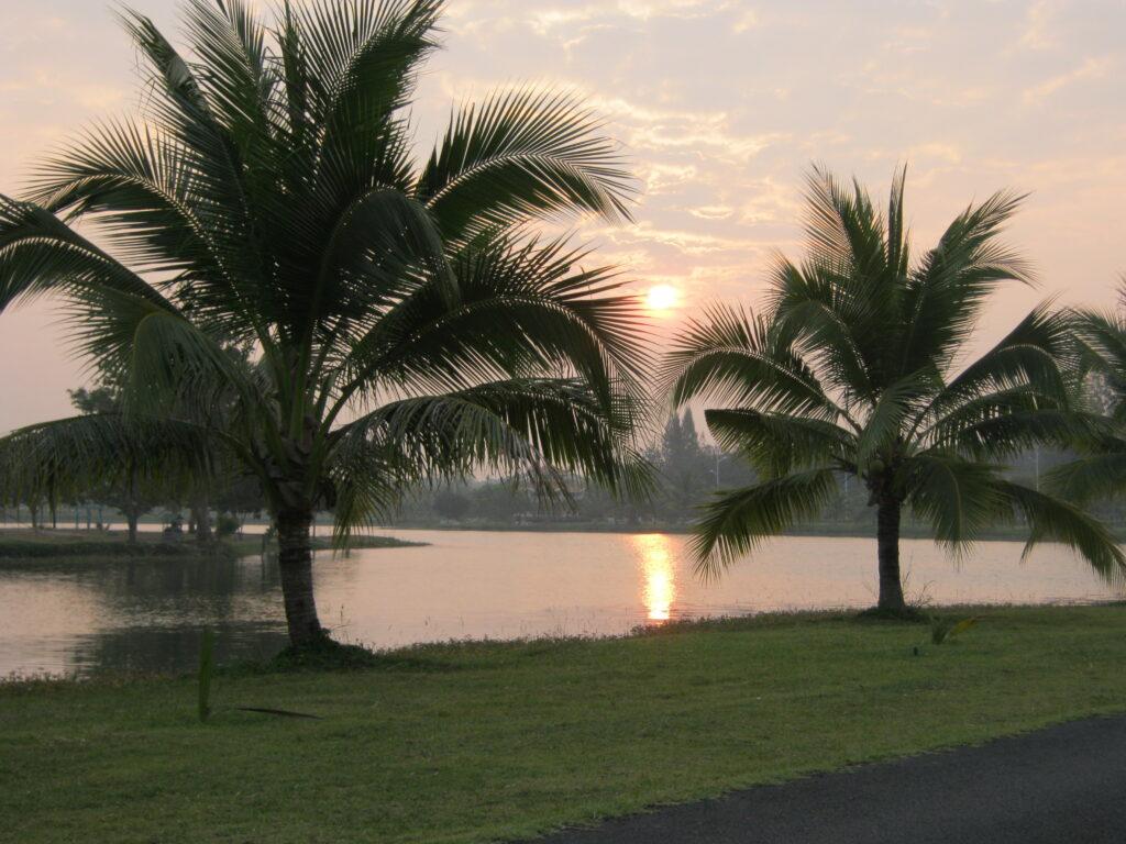 池の公園から昇る朝日。