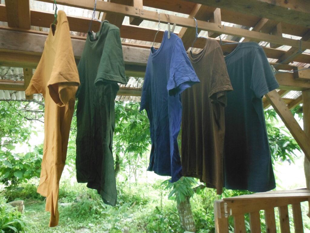 Tシャツを乾かす。